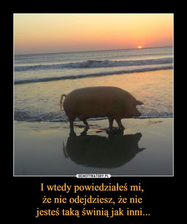I wtedy powiedziałeś mi, że nie odejdziesz, że nie jesteś taką świnią jak inni... –