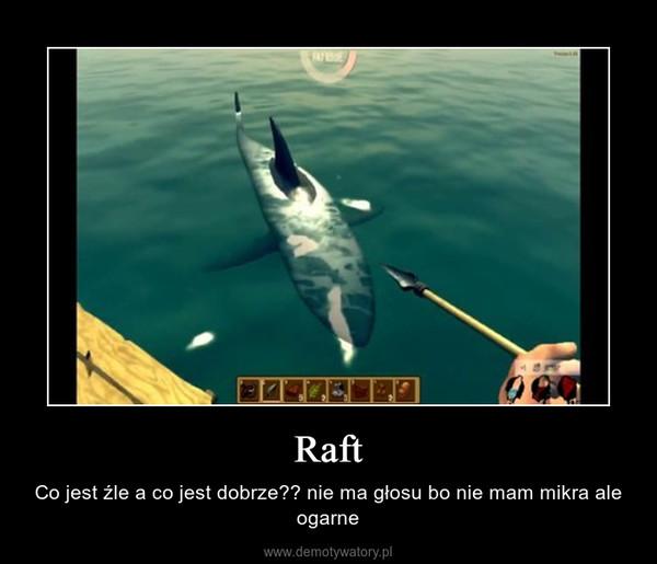 Raft – Co jest źle a co jest dobrze?? nie ma głosu bo nie mam mikra ale ogarne