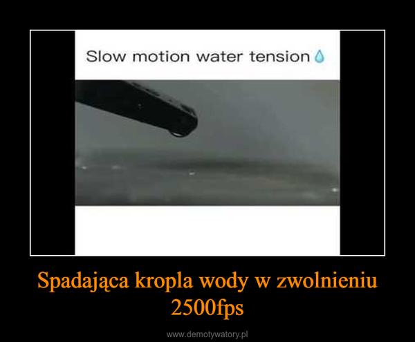 Spadająca kropla wody w zwolnieniu 2500fps –