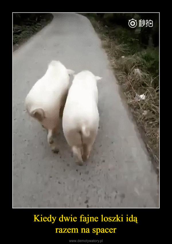 Kiedy dwie fajne loszki idąrazem na spacer –