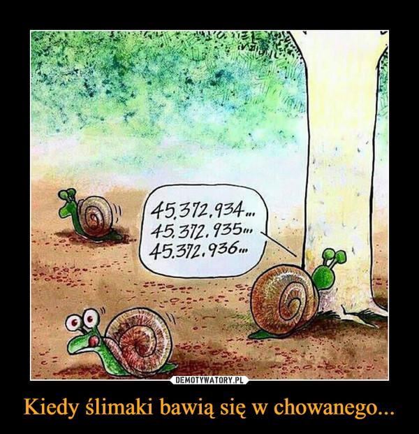 Kiedy ślimaki bawią się w chowanego... –