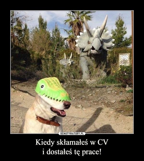 Kiedy skłamałeś w CVi dostałeś tę prace! –