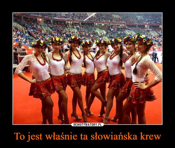 To jest właśnie ta słowiańska krew –