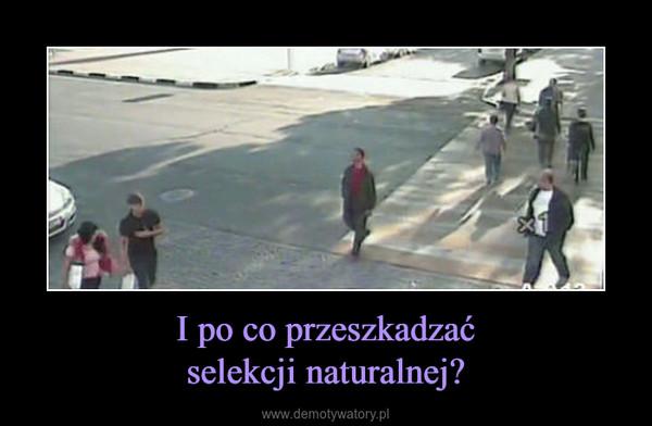 I po co przeszkadzaćselekcji naturalnej? –