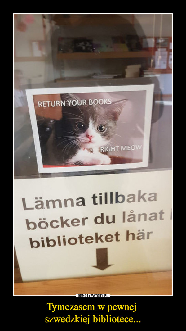 Tymczasem w pewnej szwedzkiej bibliotece... –