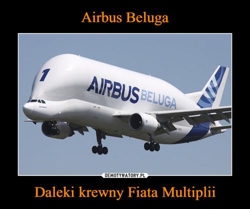 Airbus Beluga Daleki krewny Fiata Multiplii