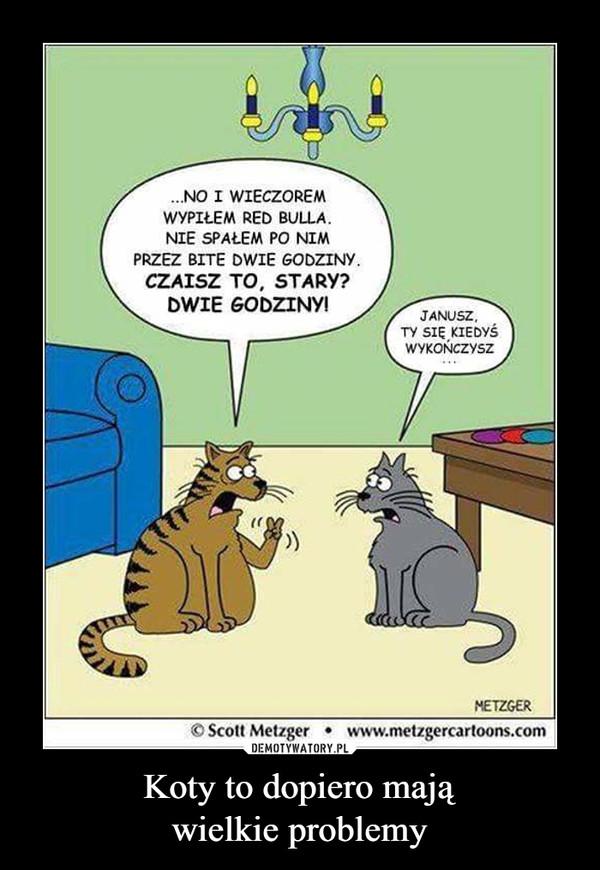 Koty to dopiero mająwielkie problemy –  ...NO I WIECZOREMWYPIŁEM RED BULLA.NIE SPAŁEM PO NIMPRZEZ BITE DWIE GODZINYCZAISZ TO, STARY?DWIE GODZINY!Janusz ty się kiedyś wykończysz