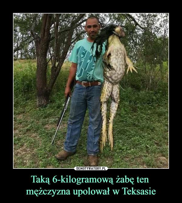 Taką 6-kilogramową żabę ten mężczyzna upolował w Teksasie –