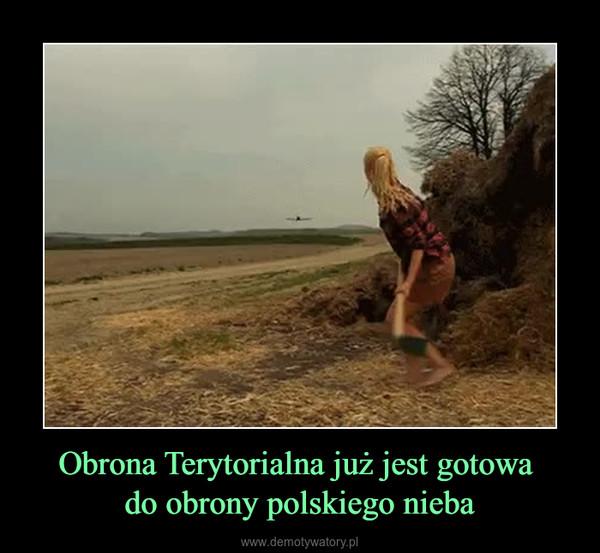 Obrona Terytorialna już jest gotowa do obrony polskiego nieba –