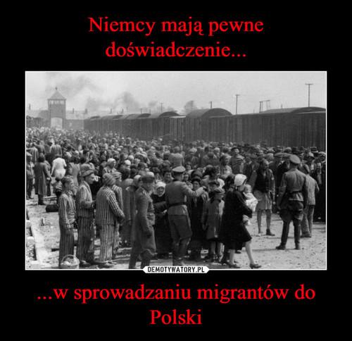 Niemcy mają pewne doświadczenie... ...w sprowadzaniu migrantów do Polski