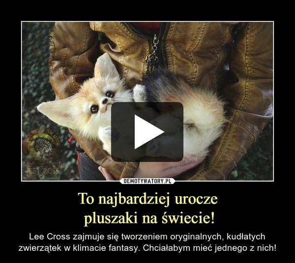 To najbardziej urocze pluszaki na świecie! – Lee Cross zajmuje się tworzeniem oryginalnych, kudłatych zwierzątek w klimacie fantasy. Chciałabym mieć jednego z nich!
