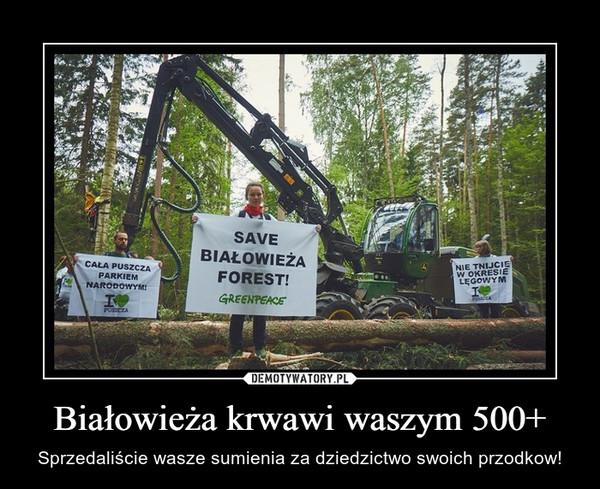 Białowieża krwawi waszym 500+ – Sprzedaliście wasze sumienia za dziedzictwo swoich przodkow!
