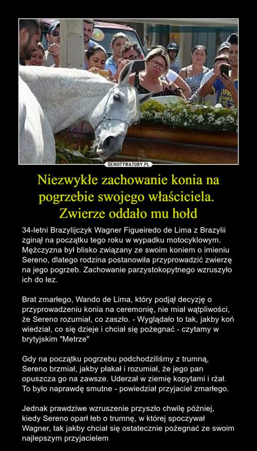 Niezwykłe zachowanie konia na pogrzebie swojego właściciela.  Zwierze oddało mu hołd