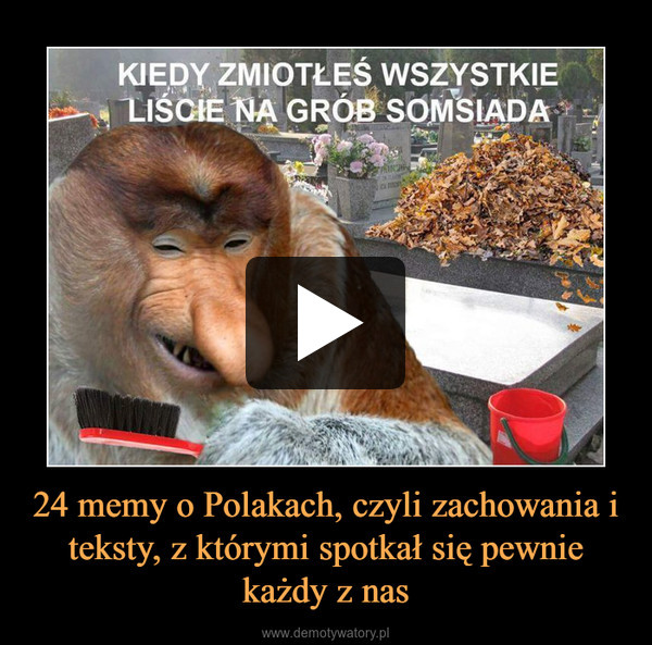 24 memy o Polakach, czyli zachowania i teksty, z którymi spotkał się pewnie każdy z nas –