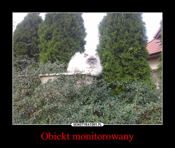 Obiekt monitorowany –