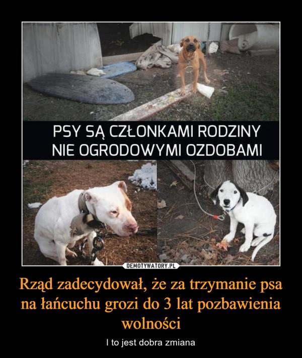 Rząd zadecydował, że za trzymanie psa na łańcuchu grozi do 3 lat pozbawienia wolności – I to jest dobra zmiana PSY SĄ CZŁONKAMI RODZINYNIE OGRODOWYMI OZDOBAMI