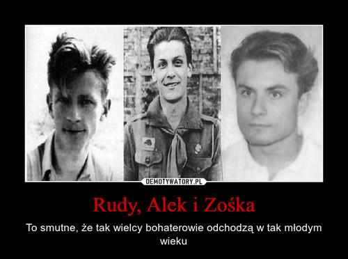 Rudy, Alek i Zośka