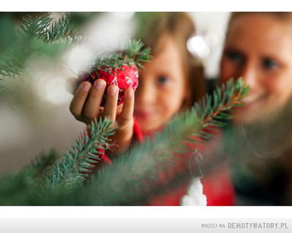 Święta – Czasami po prostu chciałbym... wrócić do tych czasów, kiedy święta były cudownym czasem, kiedy byliśmy wszyscy razem. Kiedy było mniej problemów i trosk...