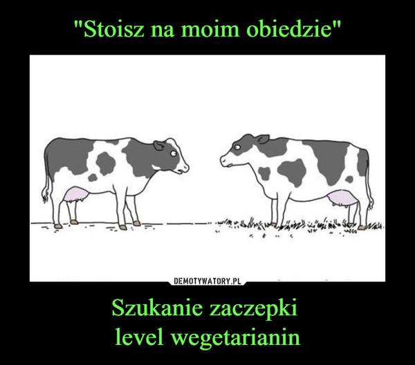 Szukanie zaczepki level wegetarianin –