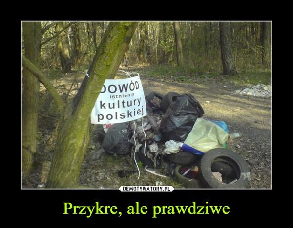 Przykre, ale prawdziwe –  dowód istnienia kultury polskiej