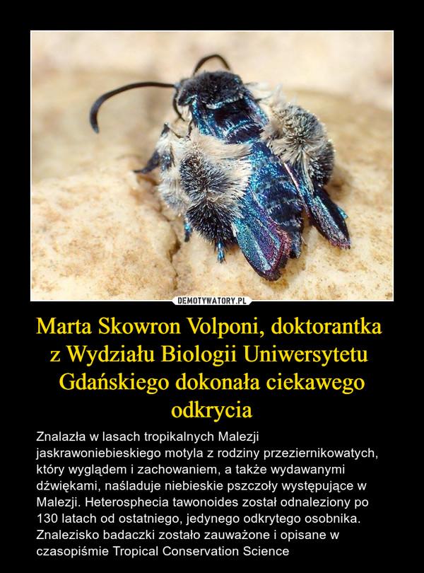 Marta Skowron Volponi, doktorantka z Wydziału Biologii Uniwersytetu Gdańskiego dokonała ciekawegoodkrycia – Znalazła w lasach tropikalnych Malezji jaskrawoniebieskiego motyla z rodziny przeziernikowatych, który wyglądem i zachowaniem, a także wydawanymi dźwiękami, naśladuje niebieskie pszczoły występujące w Malezji. Heterosphecia tawonoides został odnaleziony po 130 latach od ostatniego, jedynego odkrytego osobnika. Znalezisko badaczki zostało zauważone i opisane w czasopiśmie Tropical Conservation Science