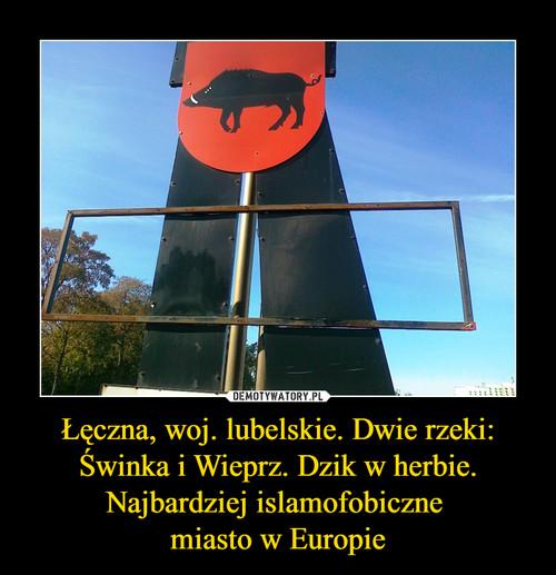 Łęczna, woj. lubelskie. Dwie rzeki: Świnka i Wieprz. Dzik w herbie. Najbardziej islamofobiczne  miasto w Europie