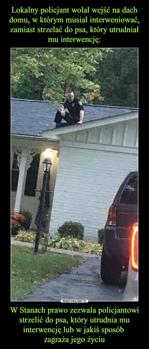 W Stanach prawo zezwala policjantowi strzelić do psa, który utrudnia mu interwencję lub w jakiś sposób zagraża jego życiu –