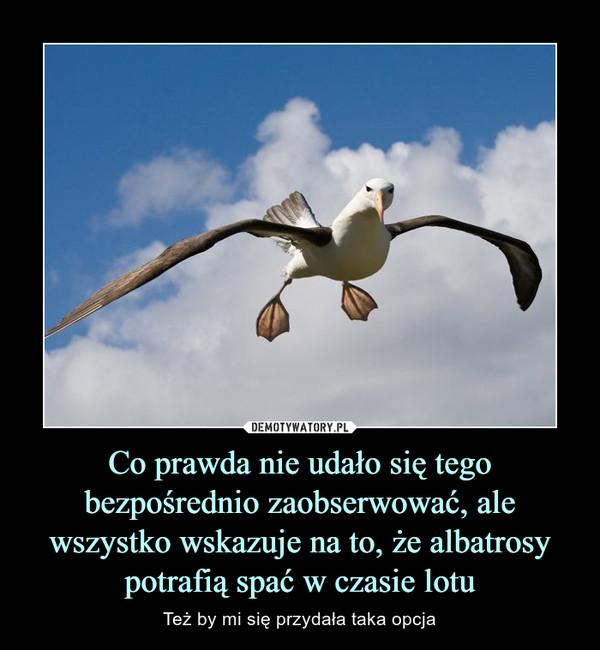 Co prawda nie udało się tego bezpośrednio zaobserwować, ale wszystko wskazuje na to, że albatrosy potrafią spać w czasie lotu – Też by mi się przydała taka opcja