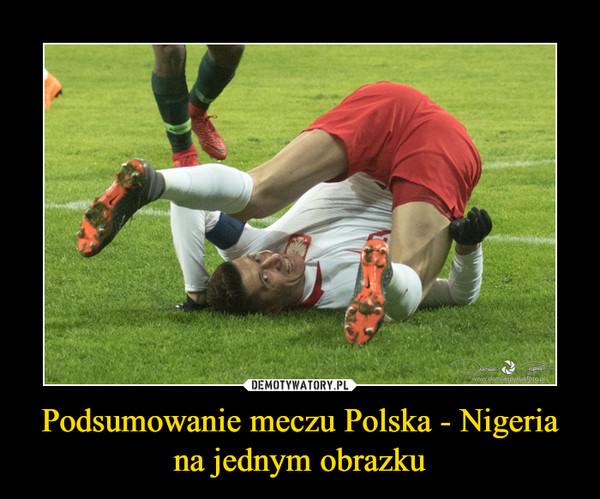Podsumowanie meczu Polska - Nigeria na jednym obrazku –