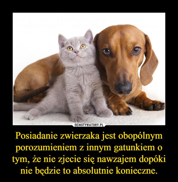 Posiadanie zwierzaka jest obopólnym porozumieniem z innym gatunkiem o tym, że nie zjecie się nawzajem dopóki nie będzie to absolutnie konieczne. –