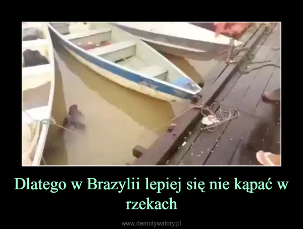 Dlatego w Brazylii lepiej się nie kąpać w rzekach –