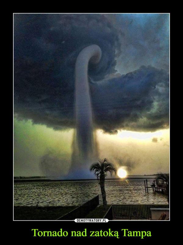 Tornado nad zatoką Tampa –