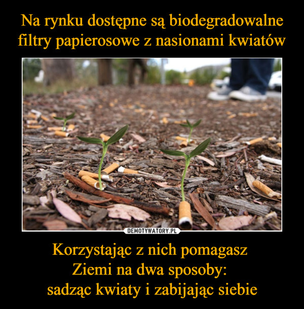 Korzystając z nich pomagasz Ziemi na dwa sposoby: sadząc kwiaty i zabijając siebie –