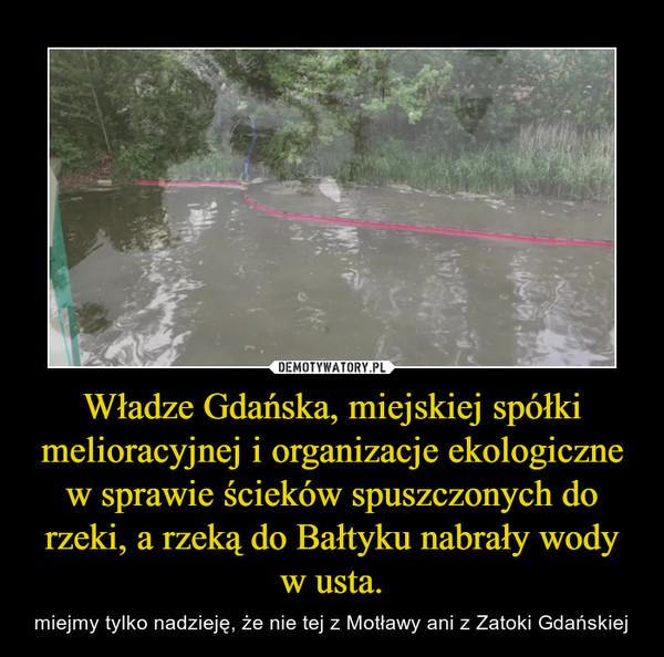 Władze Gdańska, miejskiej spółki melioracyjnej i organizacje ekologiczne w sprawie ścieków spuszczonych do rzeki, a rzeką do Bałtyku nabrały wody w usta. – miejmy tylko nadzieję, że nie tej z Motławy ani z Zatoki Gdańskiej