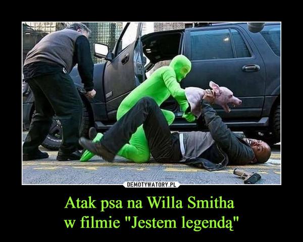 """Atak psa na Willa Smitha w filmie """"Jestem legendą"""" –"""