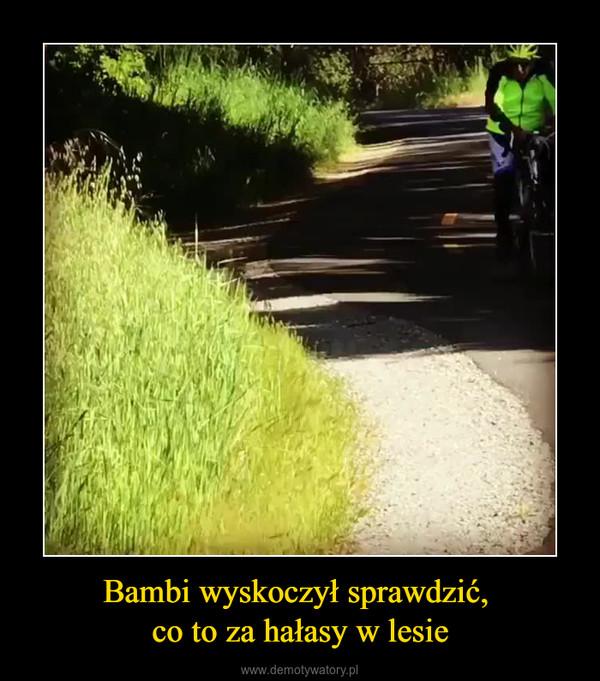 Bambi wyskoczył sprawdzić, co to za hałasy w lesie –
