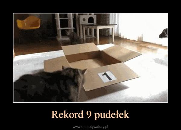 Rekord 9 pudełek –