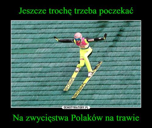 Jeszcze trochę trzeba poczekać Na zwycięstwa Polaków na trawie