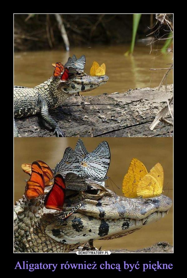 Aligatory również chcą być piękne –