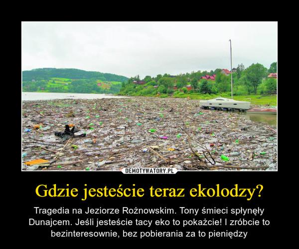 Gdzie jesteście teraz ekolodzy? – Tragedia na Jeziorze Rożnowskim. Tony śmieci spłynęły Dunajcem. Jeśli jesteście tacy eko to pokażcie! I zróbcie to bezinteresownie, bez pobierania za to pieniędzy