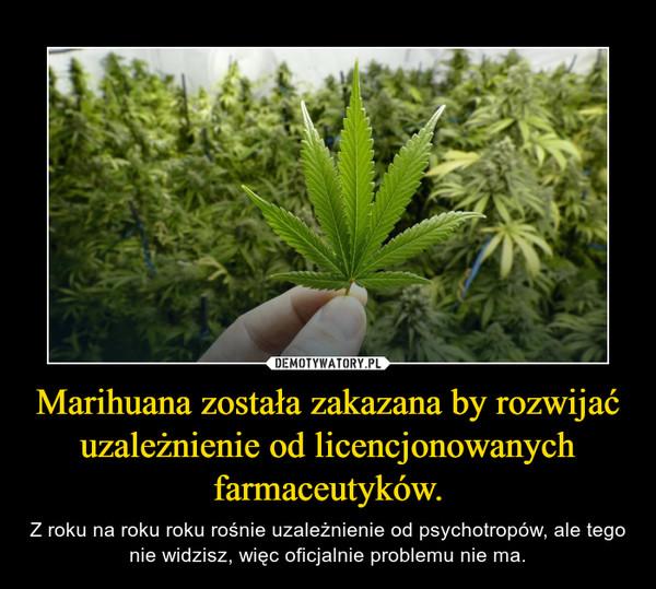 Marihuana została zakazana by rozwijać uzależnienie od licencjonowanych farmaceutyków. – Z roku na roku roku rośnie uzależnienie od psychotropów, ale tego nie widzisz, więc oficjalnie problemu nie ma.