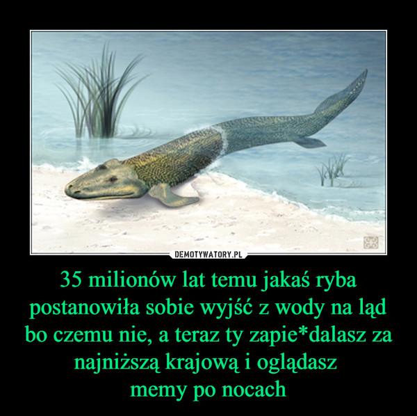 35 milionów lat temu jakaś ryba postanowiła sobie wyjść z wody na ląd bo czemu nie, a teraz ty zapie*dalasz za najniższą krajową i oglądasz memy po nocach –
