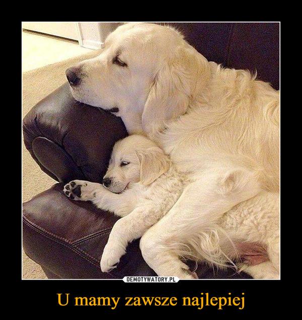 U mamy zawsze najlepiej –