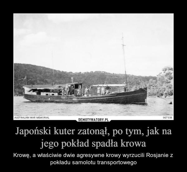 Japoński kuter zatonął, po tym, jak na jego pokład spadła krowa – Krowę, a właściwie dwie agresywne krowy wyrzucili Rosjanie z pokładu samolotu transportowego