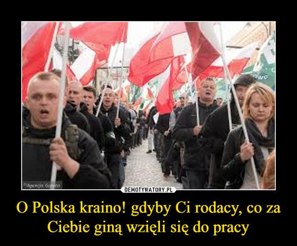 O Polska kraino! gdyby Ci rodacy, co za Ciebie giną wzięli się do pracy –
