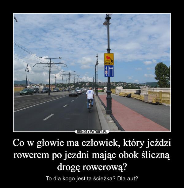Co w głowie ma człowiek, który jeździ rowerem po jezdni mając obok śliczną drogę rowerową?