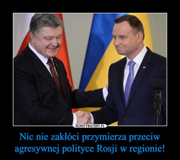 Nic nie zakłóci przymierza przeciw agresywnej polityce Rosji w regionie! –