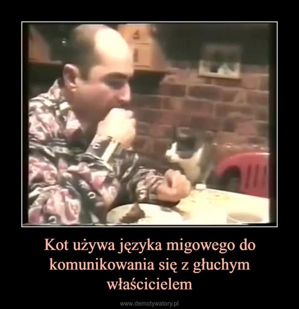 Kot używa języka migowego do komunikowania się z głuchym właścicielem –