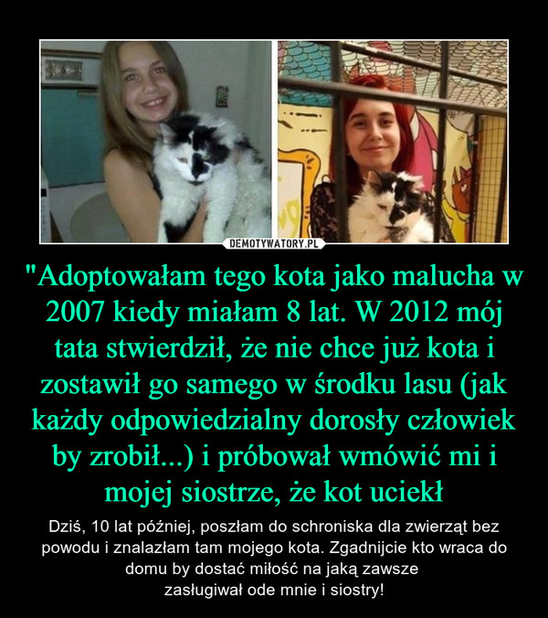 """""""Adoptowałam tego kota jako malucha w 2007 kiedy miałam 8 lat. W 2012 mój tata stwierdził, że nie chce już kota i zostawił go samego w środku lasu (jak każdy odpowiedzialny dorosły człowiek by zrobił...) i próbował wmówić mi i mojej siostrze, że kot uciekł – Dziś, 10 lat później, poszłam do schroniska dla zwierząt bez powodu i znalazłam tam mojego kota. Zgadnijcie kto wraca do domu by dostać miłość na jaką zawsze zasługiwał ode mnie i siostry!"""