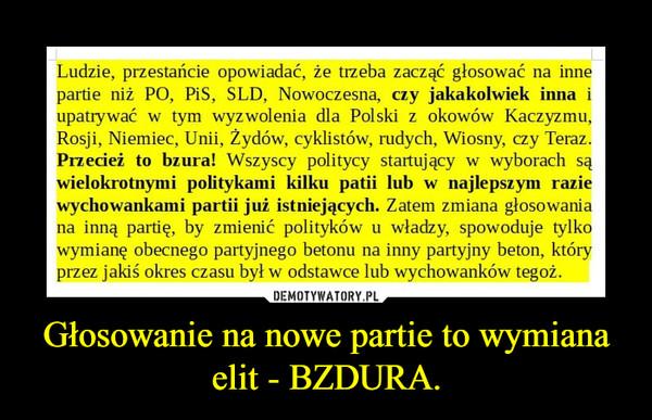Głosowanie na nowe partie to wymiana elit - BZDURA. –